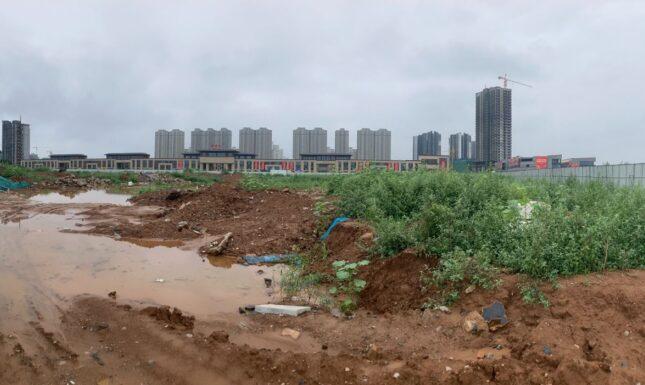 Site du le yuan banner