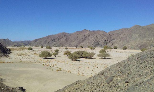 The eastern desert