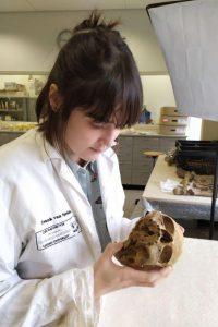 Maia casna skull